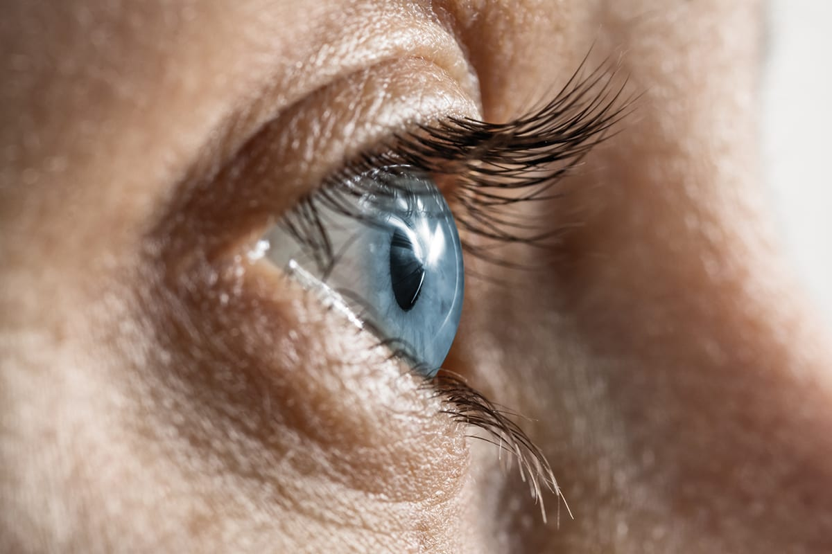 Parasites can possibly cause optic neuritis and to your brain